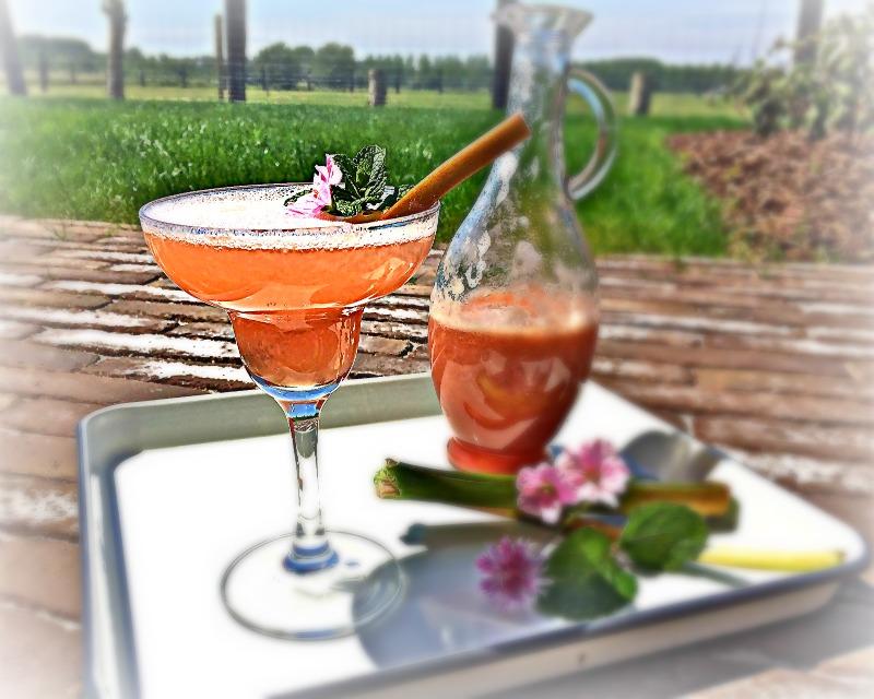 Rabarbercocktail met cava - www.truitjeroermeniet.be